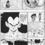 Crítica: Dragon Ball Vol. 17