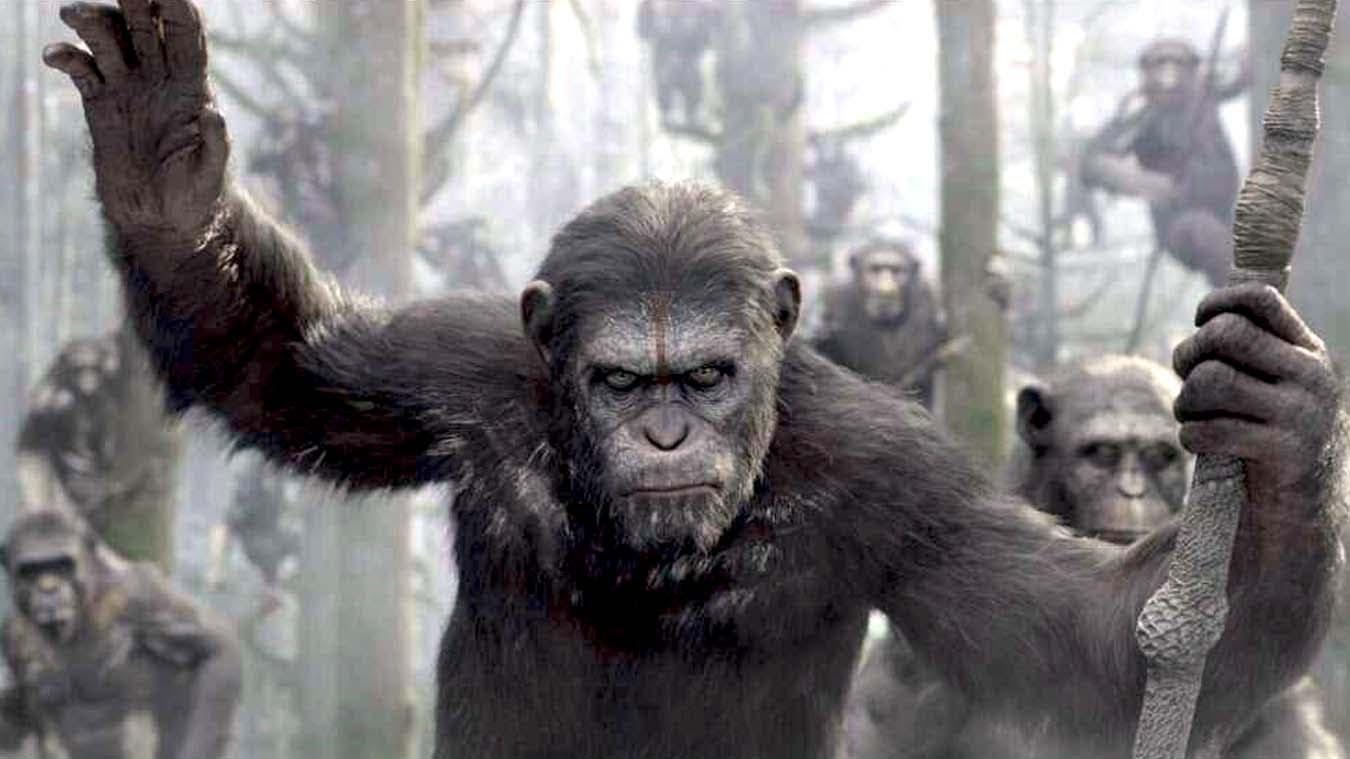 """Planeta dos Macacos: A Revolta"""