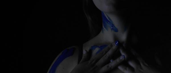 Bluebird_01